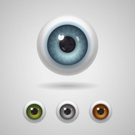 ojos verdes: Globos del ojo con grandes iris de azul, verde, gris y colores avellana