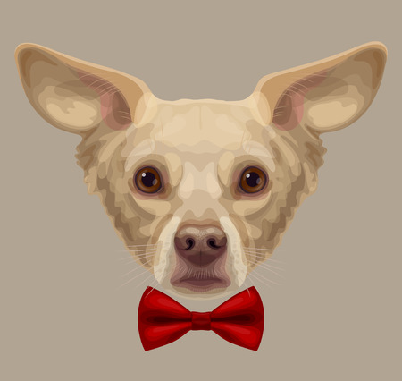 olhos castanhos: Drawn funny lop-eared beige-colored dog muzzle with brown eyes and brown nose, with stylish red bow-tie