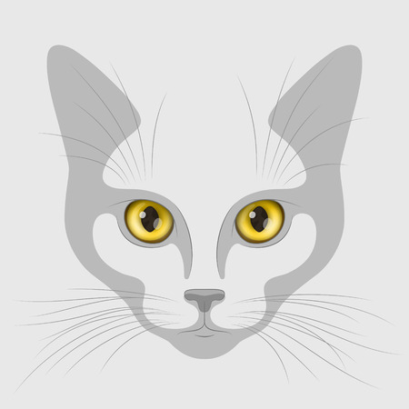 felidae: Muzzle of cat with big yellow eyes on gray background. Stylized flat drawing of muzzle and realistic expressive eyes