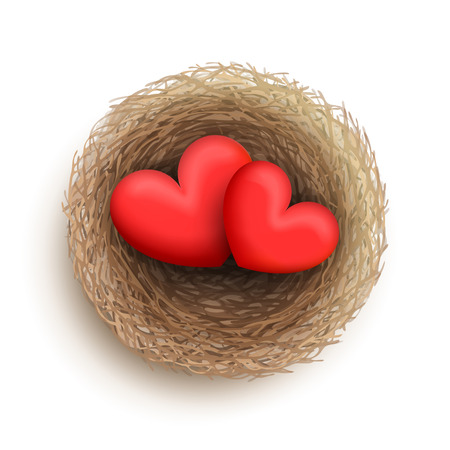family life: Two red hearts are laying together in nest. Family and fireside. Love and harmony in family life