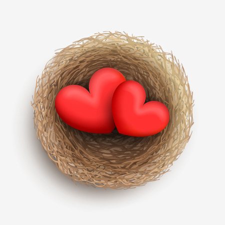 two hearts together: Two red hearts are laying together in nest. Love and harmony in family life Illustration
