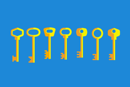 encoded: Set of different gray keys on blue background. Flat style Illustration