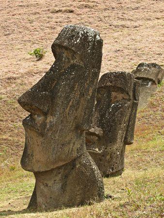 moai: Estatuas Moai en la ladera de Rano Raraku, Rapa Nui.