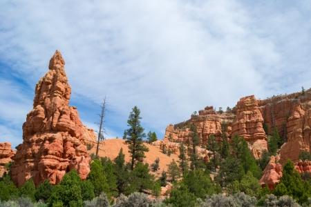 National Park Bryce Canyon, Utah.