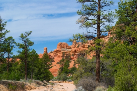 Beautiful Landscape, Utah  Stock Photo