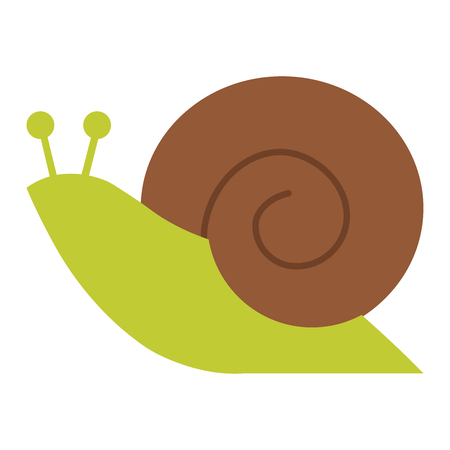 Vector flat style illustration of snail. Icon for web. Isolated on white background.