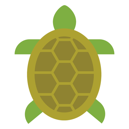 Icône de contour rempli de tortue, signe de vecteur de ligne, pictogramme coloré linéaire isolé sur blanc. Symbole, icône illustration. Pixel graphiques vectoriels parfaits