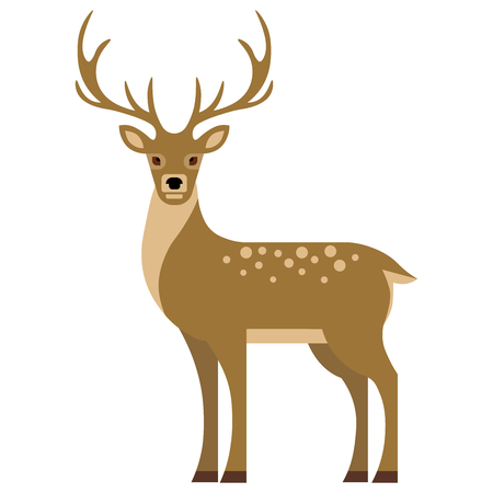 Vector winter character. Young deer in flat style. vector illustration.