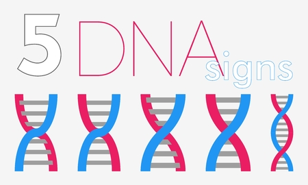 guanine: 5 DNA flat signs in pink and blue colors Illustration