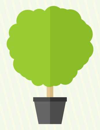 leafage: Flat style green tree in a pot Illustration