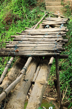 forgot: old destroyed bridge over the ravine of bamboo in the forest