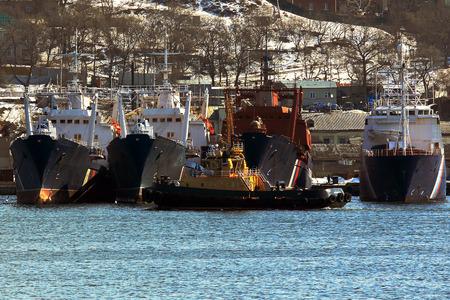 fischerei: Gefäße für Fischerei und Raid Schlepper in der Stadt Wladiwostok Russland geparkt