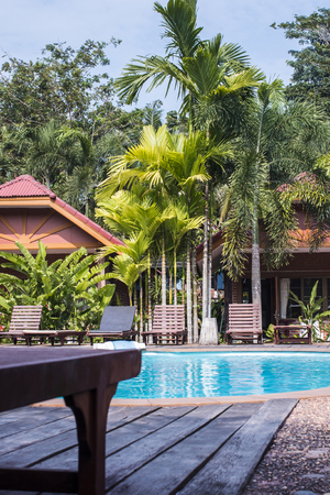 zwembad met blauwe water met ligstoelen onder de palmbomen.