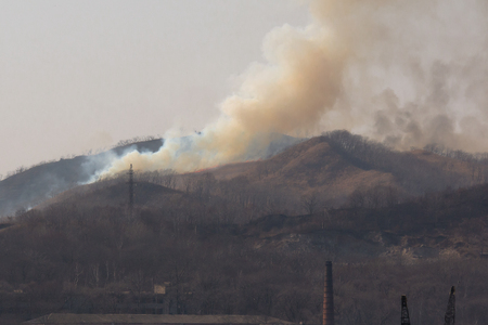 fire and smoke from a forest fire in dry weather and snowless winter this year in Primorsky Krai Russia