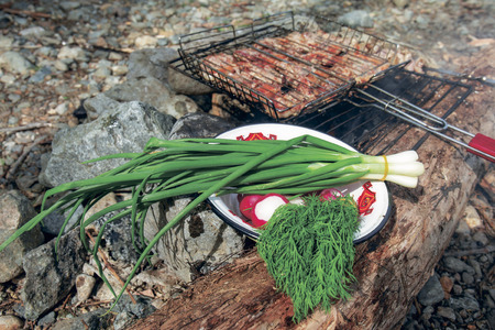 picnic in nature with fresh vegetables and barbecue