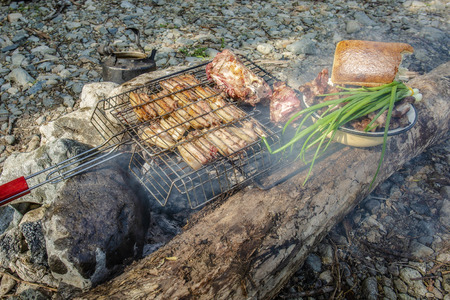 barbecue over a fire with vegetables and bread during a picnic Foto de archivo