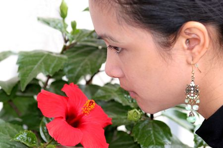 asian girl smells hibiscus flower photo
