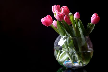 tulips in the vase photo