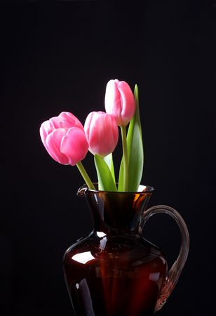 tulips in the vase photo