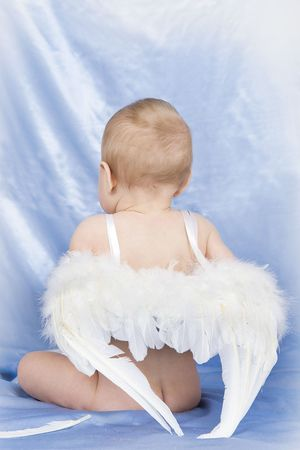 Baby with angel wings photo