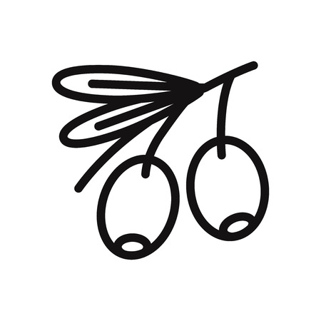 Olive vector icon