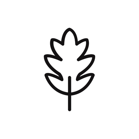 Leaf vector icon