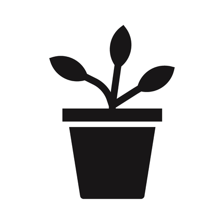 Potted plant icon vector