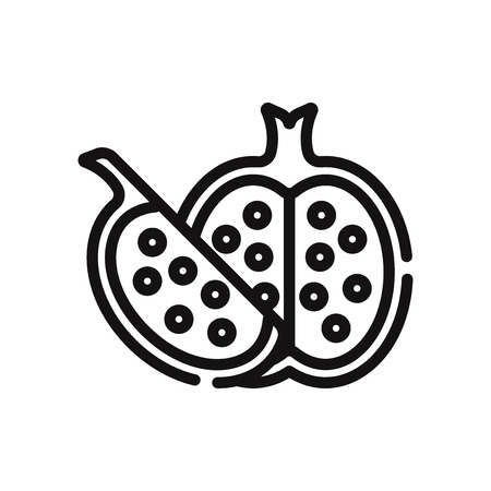 Pomegranate vector icon