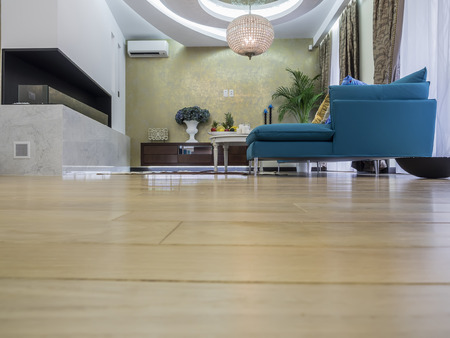 living: Living room interior