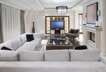 Modern minimalistic living room Stock Photo - 99114656