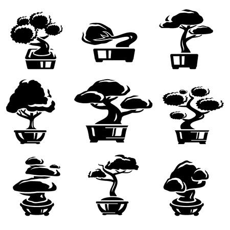 Bonsai tree set