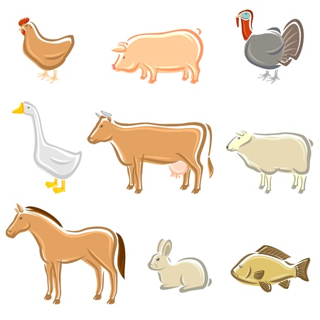 natural cock: Farm animals set  Vector