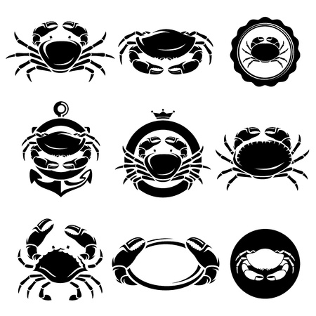 crabs: Crab set Illustration