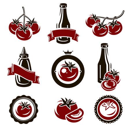 tomato: Tomato set  Vector Illustration
