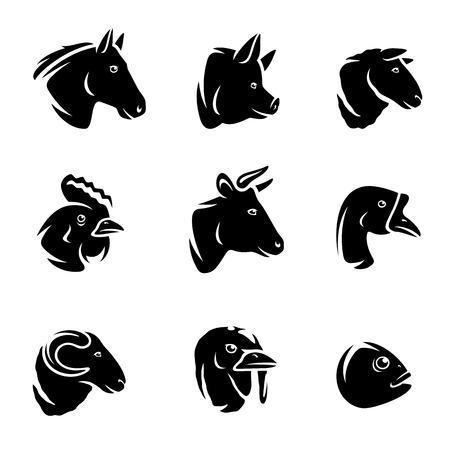 Farm animals set  Vector illustration Vector