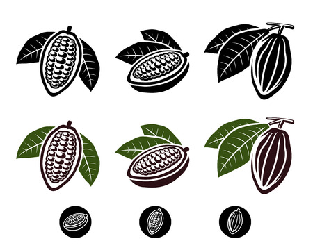 vector_Cacao beans set  Vector