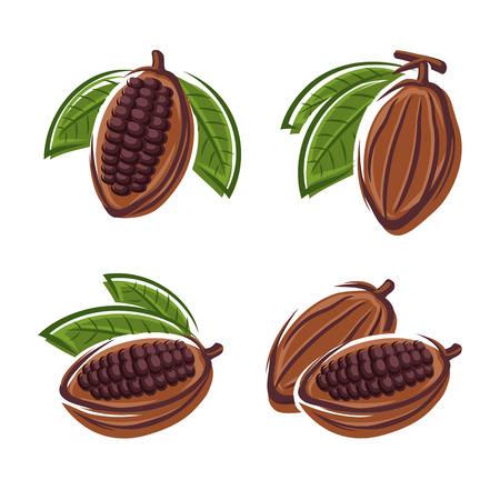 bean pod: Cacao beans set  Vector