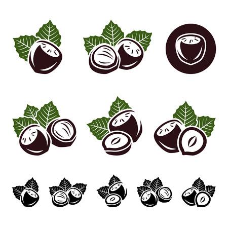Hazelnut nuts set Vector