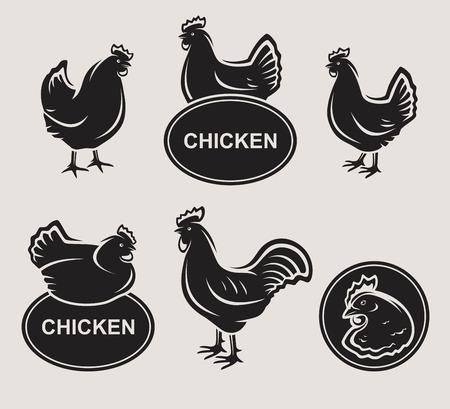 Chicken set  Vector Vectores
