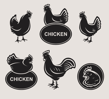 Chicken set  Vector Stock Illustratie