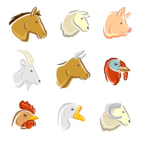 goose head: Farm animals set  Vector
