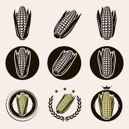 Corn label and icons set  Vector  Çizim