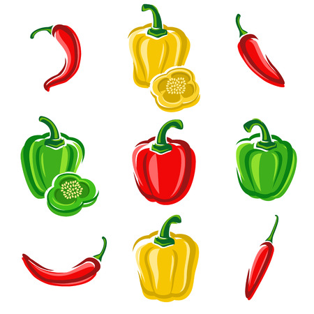 cayenne pepper: Chili and pepper set  Vector