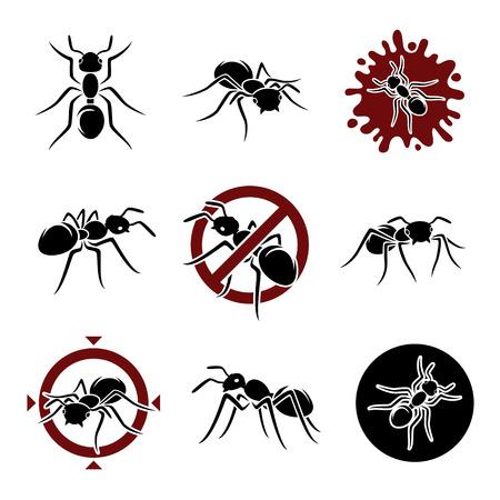ant: Conjunto Ant Vector