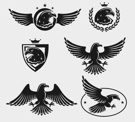 Eagles set.  Vector
