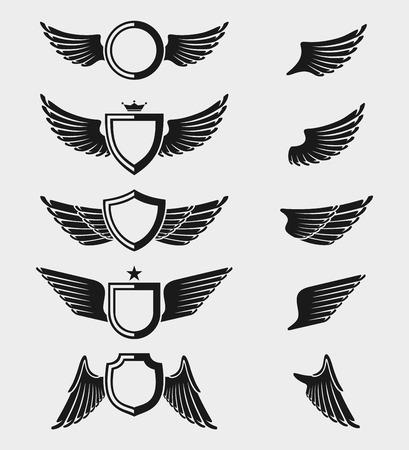 Wings set.  Vector