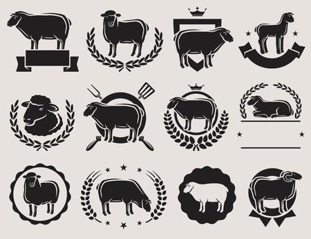 Sheep and lamb labels set. Vector