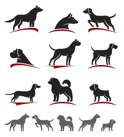 dog run: Dogs set. Vector