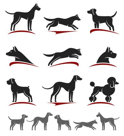 perro corriendo: Perros establecen. Vectores