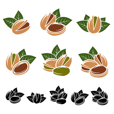 pistachio: Pistachio nuts set.  Illustration